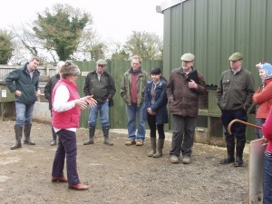 Marlene Renshaw explains what the judge is looking for in a show pig.