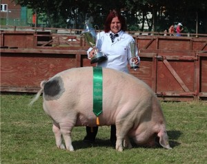 Teresa Cook with Winterwwod Princess 213, Breed Champion at the Great Yorkshire Show