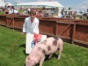 Marlene Renshaw with Dockenbush Star 59 - the January gilt winner