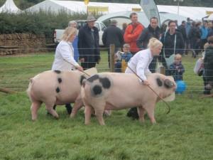 Lorraine & Sarah Whitley guide the Birchfield girls.